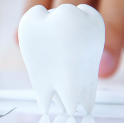 Gum Disease Health